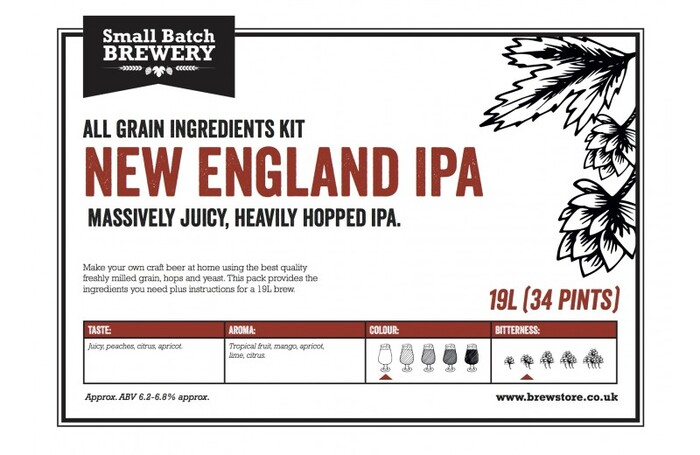 19L New England IPA