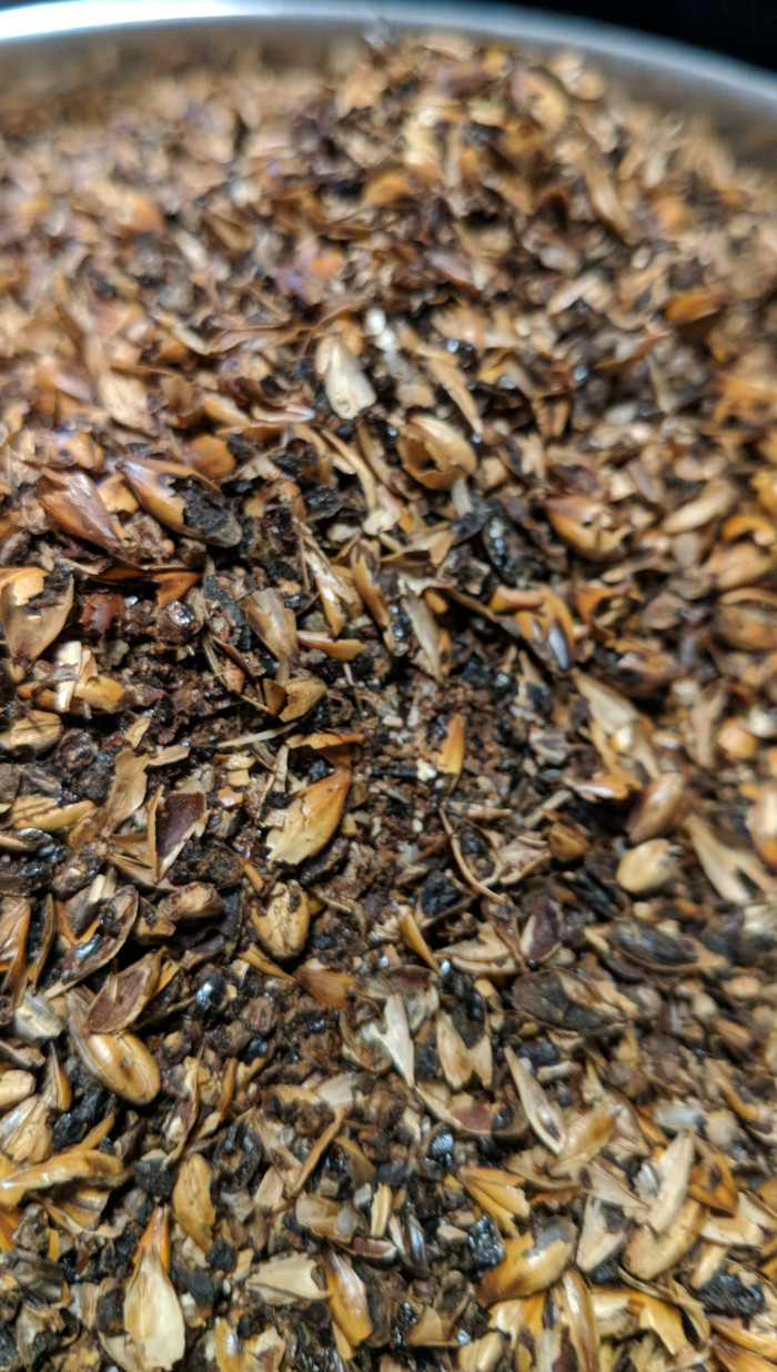 Amber malted barley grains in a stainless steel pot